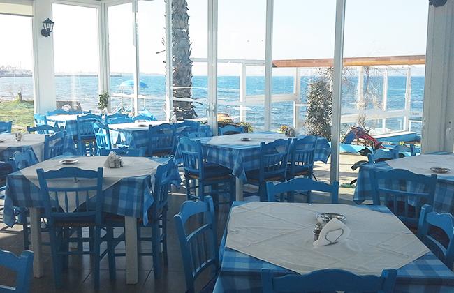 blue-ocean-04.jpg