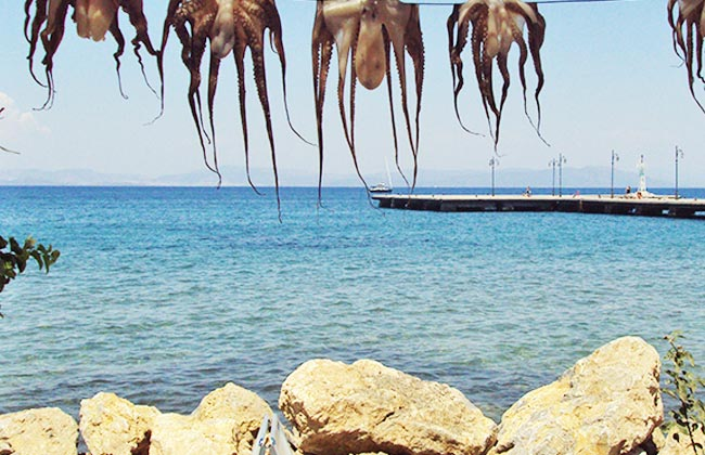 kalymnos-9.jpg