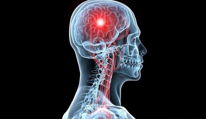 Ο εγκέφαλος έχει εξειδικευμένες περιοχές για όλα τα είδη των γεύσεων