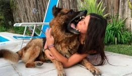 Εικόνες - ΣΟΚ: Πόζαρε για selfie δίπλα στο σκύλο και την κατακρεούργησε