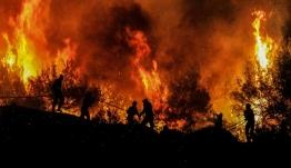 Ολονύχτια μάχη με τις φλόγες στην Κρήτη: Πυρκαγιά κατέστρεψε 20 στρέμματα γης