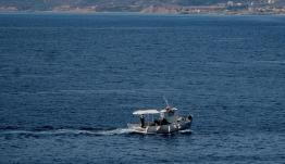 Εισβολή ξενικών ψαριών στο Αιγαίο, από την Ερυθρά θάλασσα -Κάποια τοξικά και επικίνδυνα