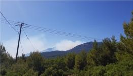 Κιθαιρώνας: Παραμένει εκτός ελέγχου η φωτιά - Οι ισχυροί άνεμοι δυσκολεύουν την κατάσβεση