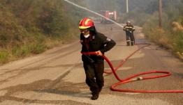 Λέσβος: Στάχτη έγιναν 100 στρέμματα στη Σίντα Μεγαλοχωρίου - Υπό πλήρη έλεγχο η δασική πυρκαγιά