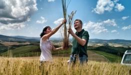 Ένταξη 50 αγροτών από το Νότιο Αιγαίο στο πρόγραμμα Αγροτικής Ανάπτυξης γεωργικών εκμεταλλεύσεων
