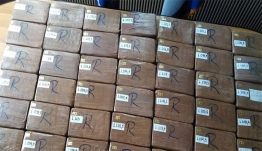 Νέες συλλήψεις για την ποσότητα ναρκωτικών «μαμούθ» - 1.300 κιλά κοκαΐνης έκρυβαν Αλβανοί σε ενοικιαζόμενα δωμάτια