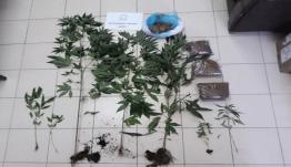 Αστυνομική επιχείρηση πραγματοποιήθηκε στη Λέρο για την καταπολέμηση της διάδοσης των ναρκωτικών