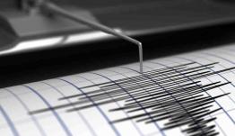 Σεισμός στην Ελλάδα: Αυτές είναι οι περιοχές που κινδυνεύουν [χάρτες]
