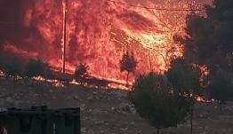 Πύρινος εφιάλτης στη Ζάκυνθο: Κάηκαν σπίτια, εκκενώθηκαν χωριά – Ολονύχτια μάχη των πυροσβεστών